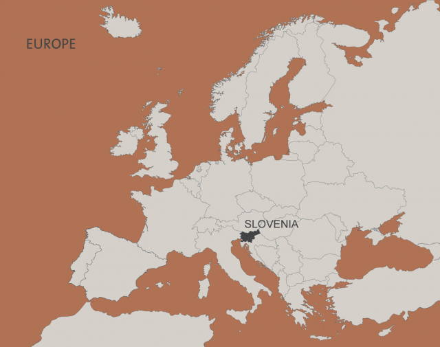 europa siva-01